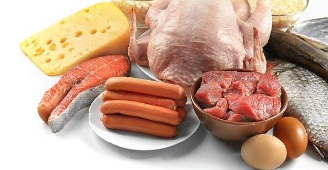 Makanan yang Mengandung Protein Hewani yang Tinggi